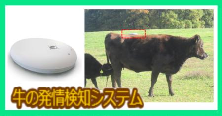 牛の発情検知システム